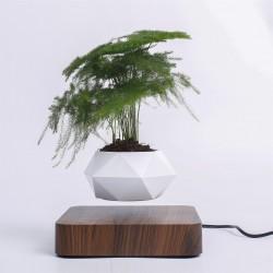 Levitujúci črepník tmavohnedé drevo