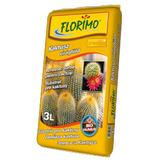 FLORIMO Kaktusy