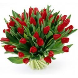Kytica 50 červených tulipánov
