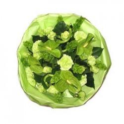 Zelený sen